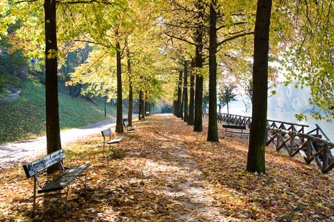 foto-europa-outono