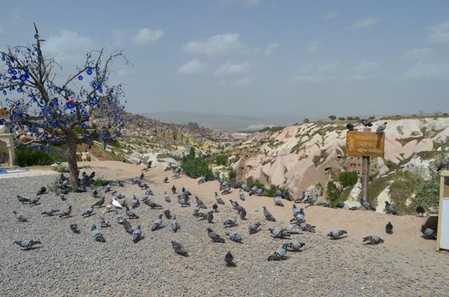 Vale dos Pássaros