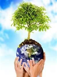Sete dicas para uma viagem mais sustentável