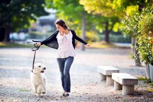 lugares para passear com os cães