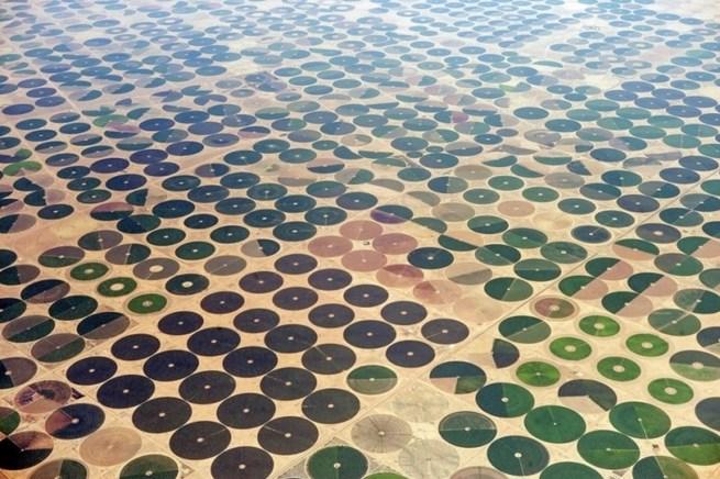 Lavoura de grãos, Arábia Saudita