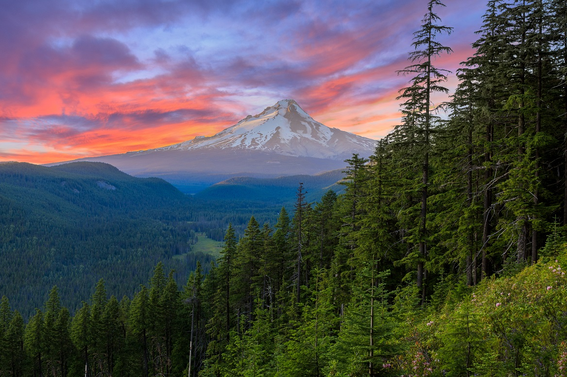 6 coisas surpreendentes para fazer no território do Monte Hood
