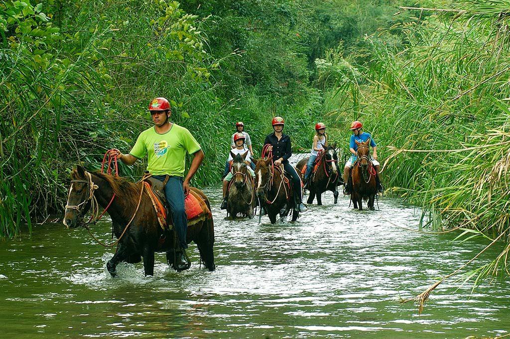 Invista no turismo rural em suas férias de final de ano