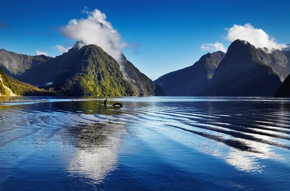 Nova Zelândia, para quem busca a beleza natural mais pura